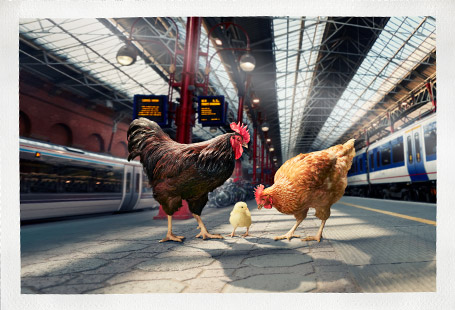 Chicken family at Marlebone Station